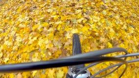 骑自行车者乘驾 股票视频