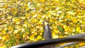 骑自行车者乘驾 影视素材