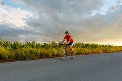 骑自行车者在沿领域的一辆路自行车乘坐 在背景中美丽的蓝天 免版税库存照片