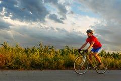骑自行车者在沿领域的一辆路自行车乘坐 在背景中美丽的蓝天 库存照片