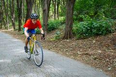 骑自行车者在路的一辆路自行车乘坐在森林 免版税库存图片