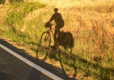 骑自行车者影子 免版税图库摄影
