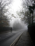 骑自行车者日偏僻有薄雾 免版税库存图片
