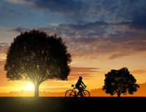 骑自行车者的剪影 免版税库存图片