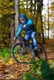 骑自行车者秋天森林 库存图片