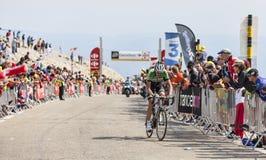 骑自行车者罗伯特Gesink 库存照片
