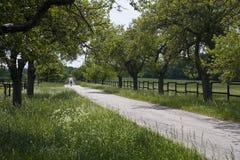 骑自行车者路 免版税库存照片