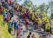 骑自行车者阿尔贝托Losada -环法自行车赛2016年 免版税库存图片