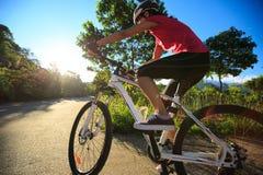 骑自行车者骑马在日出森林足迹的登山车 库存图片