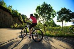 骑自行车者骑马在日出森林足迹的登山车 免版税库存图片