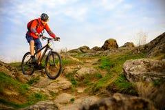 骑自行车者骑马在美好的春天岩石足迹的登山车 极端体育概念 图库摄影