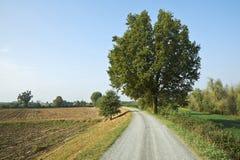 骑自行车路径 免版税库存图片
