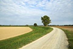 骑自行车路径 库存照片