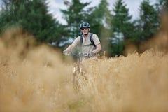 骑自行车路的冒险 库存图片