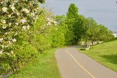 骑自行车路 免版税图库摄影