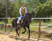 骑马人训练  免版税库存照片