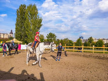 骑马在公园 免版税库存照片