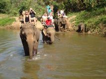 骑马大象在河 免版税库存照片