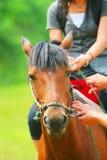 骑马女孩日语 免版税库存照片