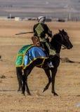 骑马展示的图片 库存图片