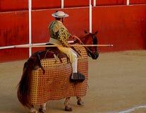 骑马斗牛士 库存图片