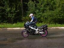 骑马特技 免版税库存图片