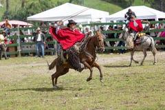 骑马的牛仔,当处理套索时 库存图片