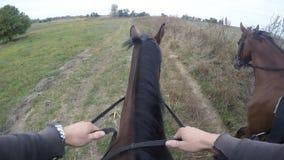 骑马第一人景色  走在公马的车手观点在自然 Pov行动 关闭 免版税图库摄影