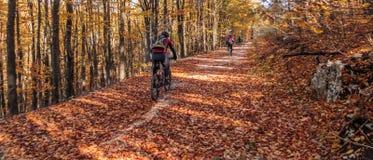 骑马自行车通过乡下公路在秋天 免版税图库摄影