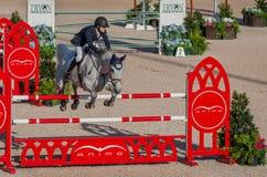 骑马跳跃赛 免版税库存照片