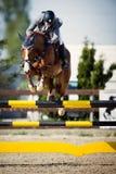 骑马马车手跳跃 生动描述显示执行在跳跃赛中的竞争者 库存照片