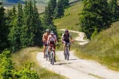 骑登山车的三个骑自行车者在晴天在山路,罗马尼亚 库存图片