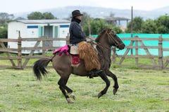 骑他的马的牛仔在厄瓜多尔 库存图片