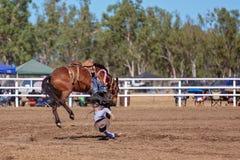 骑A顽抗的野马的牛仔在国家圈地 免版税库存图片