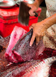 去骨切片一条新鲜的被抓的海鱼的工作者 库存照片