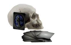 头骨和占卜用的纸牌 库存图片