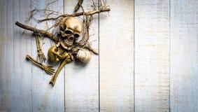 头骨和根在白色木背景 免版税图库摄影