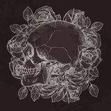 头骨和玫瑰在外形在外形 免版税库存图片