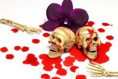 头骨和血液 向量例证