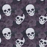 头骨和黑暗的玫瑰 库存照片
