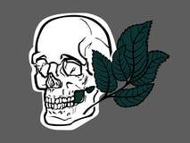 头骨和绿色事假 图库摄影