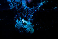头骨在水中 免版税图库摄影