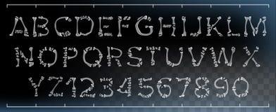 骨头字体传染媒介 做在透明骨头外面 妖怪可怕的字体 大写字母和数字 解剖学海盗 库存例证