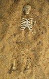 骨头被埋没的沙子概要 免版税图库摄影
