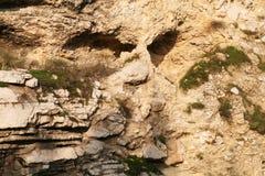 头骨岩层在耶路撒冷,以色列 库存图片