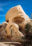 头骨岩石 库存图片