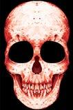 头骨岩石n卷乐队音乐传染媒介人T恤杉设计 免版税库存图片