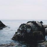 头骨海岛 库存照片