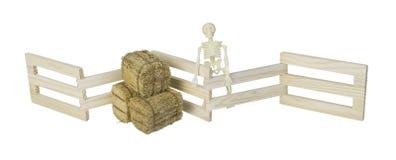 骨骼和大包在木篱芭的干草 库存照片
