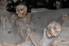 骨骼在小船棚子,赫库兰尼姆考古学站点,褶皱藻属,意大利 免版税库存图片